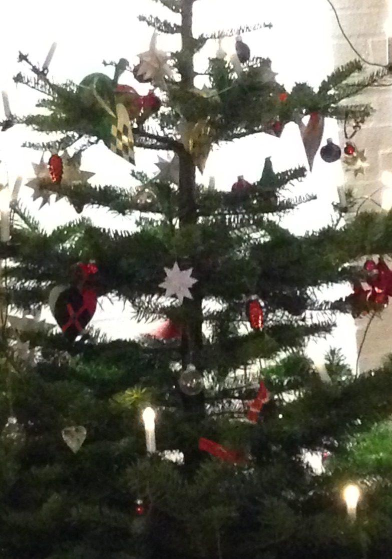 juletræ økologisk juletræer køb østjylland Mariager Østjylland